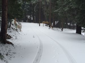 Lake Arrowhead Snow 3