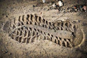Lake Arrowhead Footprint
