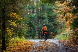 Fall Leaves Mountain Biking